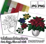 Weihnachtsstern - DigiStamp Set
